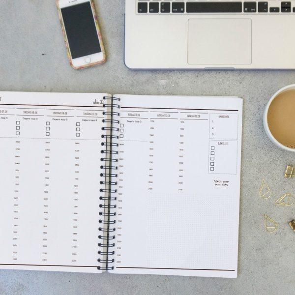2018 Produktiv planlegger Organized Almanakk